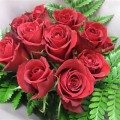 12-red-roses