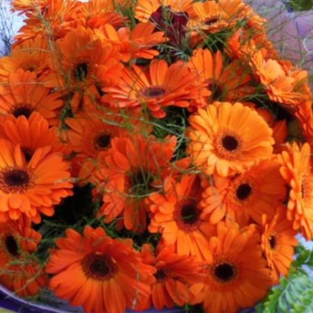 flowers and hampers 028-2